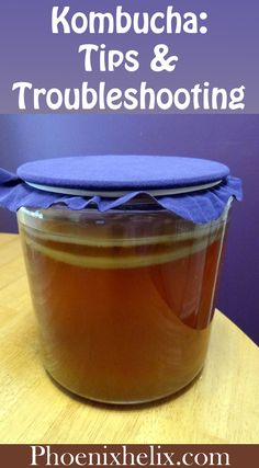 Kombucha Tips & Troubleshooting | Phoenix Helix