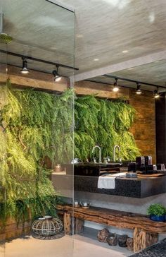 The focal point here is the lovely greenery in the wall.