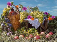 Frutta prelibata