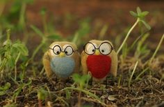 glasses, love, owl, owls, tiny