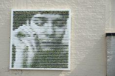 Groene street art van Mosstika