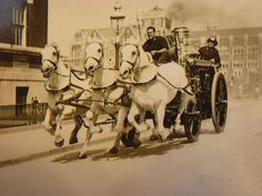 My grandfather was in FDNY and this photo is of him driving a team of three horses.  Not sure about the year - could be 1913.