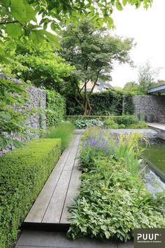 Zwemvijver centraal in stadstuin - PUUR groenprojecten Garden culture; Garden Design Images, Small Garden Design, Landscape Design, Contemporary Garden Design, Modern Design, Back Gardens, Small Gardens, Outdoor Gardens, City Gardens