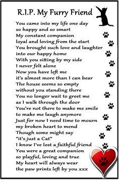 CAT Bereavement Gift Magnet - RIP My Furry Friend - cat loss, sympathy, memorial Flexible Magnet x Pet Loss Grief, Loss Of Dog, Pet Poems, Pet Loss Quotes, Pet Loss Poems, Dog Death Quotes, Pet Remembrance, Pomes, Cat Memorial