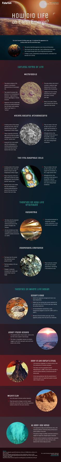 How Life Evolved on Earth (Infographic) There's a lot that we don't know about the origins and evolution of life on our planet. But there's a lot that we do know. Weird Science, Science Facts, Life Science, Earth Science, Science And Nature, Science Education, Science And Technology, Nasa, Space Story