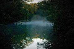 """""""Fairy Lake, Newmarket, Ontario"""" on a foggy fall morning by BenjaminNeil, via Flickr"""