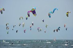 Wind Festival, Riviera Nayarit: Learn more about Mexico, its business, culture and food by joining ANZMEX http://www.anzmex.org.au OR like our facebook page http://www.facebook.com/ANZMEX