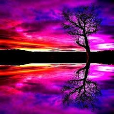 awesome colors