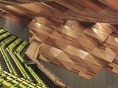 Melbourne Convention Centre Laminex Natural Timber Veneer Spotted Gum.