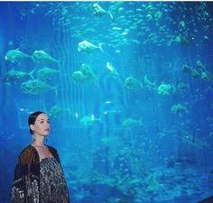 Had a magical dinner with the tour watching the natural choreography of the beautiful sea life in one of the world's largest aquariums at S.A Aquarium in Singapore S/O Ocean Video, Katherine Elizabeth, Katy Perry Pictures, Big Music, Lipstick Collection, American Singers, Glamour, Celebrities, Instagram Posts