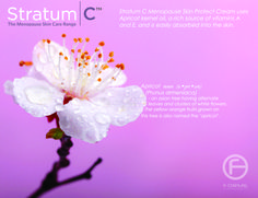 Stratum C Menopause Skin Protect Cream uses Apricot kernel oil, a rich source of Vitamins A and E, and is easily absorbed into the skin. As we reach menopause our skins becomes thinner and more sensitive and it starts to lose key nutrients due to diminishing oestrogen levels. Stratum C products are rich in optimum amounts of Apricot kernel oil to understand and care for your skin.