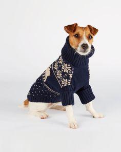 Reindeer Dog Sweater - Ralph Lauren Home For the Pet - RalphLauren.com   oh my gosh.....yes