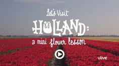 Olive Us: Let's Visit Holland