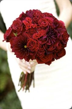 Textural red bouquet of roses, dahlias and celosia by SR Hogue