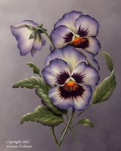 "Excellent Absolutely Free Pansies embroidery Popular Pansies are definitely the multi-colored roses with ""faces."" A cool-weather preferred, pansies are good China Painting, Tole Painting, Fabric Painting, Painting & Drawing, Glass Painting Patterns, Arte Floral, Botanical Illustration, Botanical Prints, Watercolor Flowers"