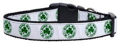 Mirage Pet Products Kiss Me I'm Irish Nylon Ribbon Dog Collar, Medium -- Remarkable product available now. : Collars for dogs