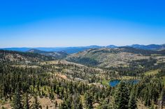 View form the PCT