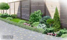 хвойные растения в ландшафтном дизайне. Ландшафтный дизайн сада. это...