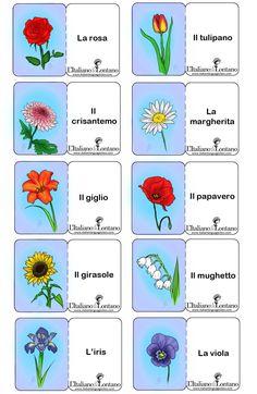 I nomi dei fiori in italiano. In omaggio alla primavera che sta arrivando, abbiamo scelto per le nostre flash card di marzo i nomi dei fiori.  Ilaria Sposetti, una delle nostre disegnatrici preferi