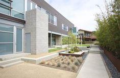Grounded - Modern Landscape Architecture - modern - Landscape - San Diego - Grounded - Richard Risner RLA, ASLA #landscapearchitecturecourtyard