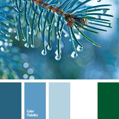 """""""baby blue"""" color, color combination, color of spruce, color selection, color solution, color solution for decoration, deep blue and green, delicate shades of deep blue, designer palettes, green and white, shades of deep blue,"""
