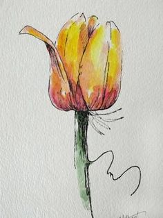 """Original artwork of a lovely single watercolor tulip rendered in pen, ink and watercolor. It is titled """"Tulip Standing Alone"""" and is signed and dated at the bottom with the title on the back. The original watercolor tulip is made up of warm shades of orange, red, pink, and yellow"""
