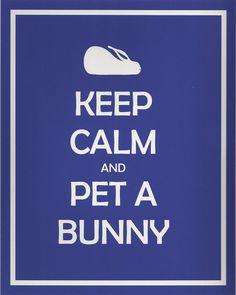 keep calm & pet a bunny :D