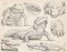 The Art Of Francisco Vasquez Animal Sketches, Animal Drawings, Drawing Sketches, Art Drawings, Creature Concept Art, Creature Design, Illustration Crocodile, Concept Art Landscape, Art Du Croquis