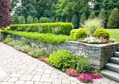 Pink, white and purple garden design