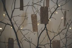 Wish tree for our wedding. Tree branch cut down from the local woods and the leaves were left to drop off. We string battery powered fairy lights amongst the branches and brown labels were written on by guests and hung on the tree.