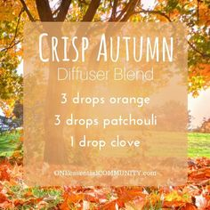crisp autumn diffuser blend PLUS recipes for 20 fall diffuser blends -- easy, non-toxic ways to make your home smell like fall using essential oils. and there's even a FREE PRINTABLE of all the fall diffuser blend recipes!!