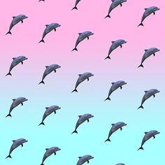 dolphin vaporwave