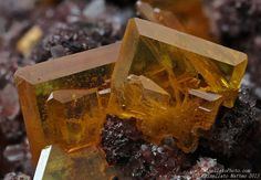 Wulfenite  Rowley Mine (Rawley Mine; Reliance Mine; Reliance Copper Mine; Rainbow Mine; Theba Mine; San Carlos patented claim #4524), Theba, Painted Rock District, Painted Rock Mts, Maricopa Co., Arizona, USA   7.13 mm group of Wulfenite crystals. Collection & Photo Matteo Chinellato