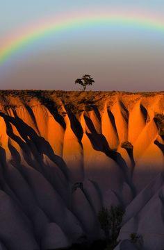 Rainbow Surprise
