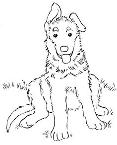 Image Result For German Shepherd Colouring Pages