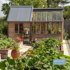 This is a very productive vegetable garden with raised beds and nicely proportioned pathways. The RHS Rosemoor Shed combination is the perfect focal point to the garden