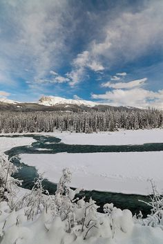 Athabasca River, Jasper National Park.