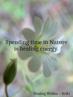 spending time in nature is healing energy