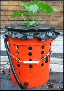 Instructions for making your own self-watering grow buckets.