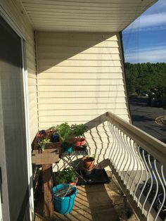 Fresh Apartment Porch Screen