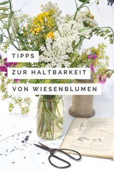 Wie du deine gepflückten Blumen von der Wiese sicher nach Hause bringst und lange Freude an ihnen hast Green Garden, Gras, Garden Inspiration, Glass Vase, Flowers, Blog, Flower Power, Lifestyle, Decor