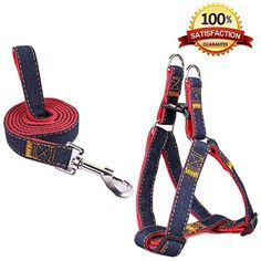 SUMCOO Adjustable NO-Pull Pet Leash Harness Set with Martingale Bark Collars for Dogs and Cats, Large *** Check out the image by visiting the link. (This is an affiliate link) #Cats