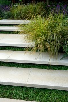 Work your concrete stair steps into your garden landscape with the addition of living moss, mint, or herbs. Soften hardscapes with fragrant greens. Landscape Steps, Modern Landscape Design, Modern Landscaping, Garden Landscaping, Garden Stairs, Garden Sofa, Garden Planters, Outdoor Steps, Garden Architecture