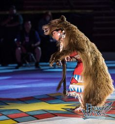 We've featured Laura Grizzlypaws before. Her Bear Dancing is incredible to watch! Watch this video!  About Paul GPaul Gowder is the owner and founder of PowWows.com. Paul started PowWows.com in 1996 during graduate school. He is a social media.....