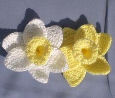 daffodils-1.jpg 1,511×1,293 pixels