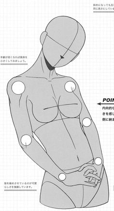 Manga Female Torso Reference.