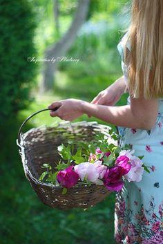 My Flower, Flower Power, Flower Farm, Beautiful Home Gardens, House Beautiful, Garden Basket, Rose Cottage, Garden Cottage, Flower Quotes