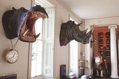 SHOOTFACTORY: other UK houses / banbury, Oxon OX17 Man Cave Homes, Taxidermy Decor, Big Game Hunting, Trophy Rooms, Steampunk House, Cedar Creek, Wall Hanger, Game Room, Horns