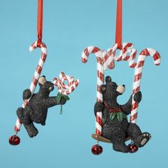 club pack of 12 peppermint twist black bear christmas ornaments 10834731