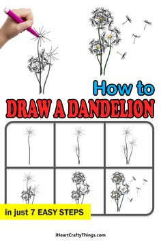 Dandelion Drawing, Places Around The World, Step Guide, Doodles, Let It Be, Drawings, Sketches, Drawing, Portrait